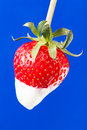 Strawberry single cream on blue background Stock Photos