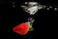 Strawberry Splash in Water, Black Bacground Royalty Free Stock Photo