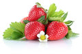 Strawberry strawberries berry berries fruit with leaves isolated