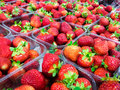 Strawberry strawberries with green weed in plastic containers at marketplace Royalty Free Stock Photography