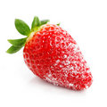 Strawberry with sugar Royalty Free Stock Photo