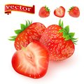 Strawberry. Sweet fruit. 3d vector icons set. Realistic illustration. juicy ripe strawberries on white background Royalty Free Stock Photo
