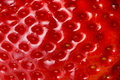 Strawberry texture Royalty Free Stock Photos