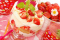 Strawberry  tiramisu dessert Royalty Free Stock Photos