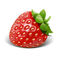 Strawberry vector Royalty Free Stock Photo