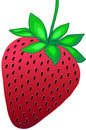 Strawberry Vector Illustration Stock Photos
