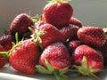 Strawberrys Royalty Free Stock Photos