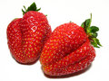 Strawberrys Royalty Free Stock Photo