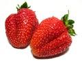 Strawberrys Royalty Free Stock Photo