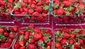 Strawberrys at marke Royalty Free Stock Photos