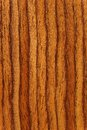 Streaks of wood close up colored in piece Stock Photos