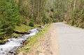 Stream alongside a mountain road fast flowing running deserted through forested slopes Stock Photo