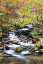 Stream in autumn Stock Photography