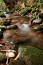 The stream beautiful scenery in moss growing on stone harmonious and peaceful Stock Image