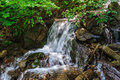 Stream cascade flowing in forest mountain with a Royalty Free Stock Images