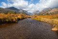 Stream in fall a scenic landscape of a colorado rocky mountain Royalty Free Stock Photo