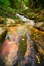 Stream in a forest mountain flows over mossy red rock Royalty Free Stock Photo