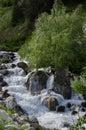 Stream in kaçkar national park Stock Image
