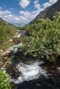 Stream in a mountain valley high tatras slovakia europe Royalty Free Stock Photography