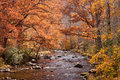 Stream near lake fontana in fall Royalty Free Stock Photo