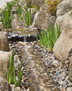Stream with rocks, stones, plants in spring Royalty Free Stock Photo