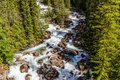 Stream view at Banff National Park Royalty Free Stock Photo