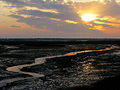 Stream of water streams and canals formed by the low tide at this swamp with dramatic sky Stock Image