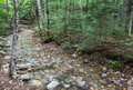 Stream in the white mountains of new hampshire usa Stock Photo
