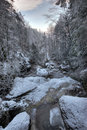 Streambed in winter Stock Photo