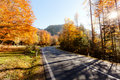 Street in autumn scene Royalty Free Stock Photos
