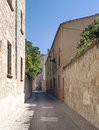 Street of ciudad rodrigo spanish city we see the stone houses with windows and trees it is an image vertically on a sunny day Stock Images