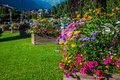Street decorated by flowers chamonix mont blanc france europe Stock Images