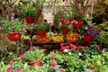 The street decoration with flowers and fruits Royalty Free Stock Photo