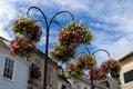Street flowers, Truro