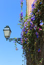 Street lamp with flowers in lisbon portugal Royalty Free Stock Images