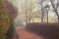 Street lamp and footpath in a foggy autumn
