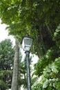 Street lamp old in a city park in la spezia Stock Photo