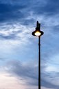 Street lamps in the evening Stock Photography