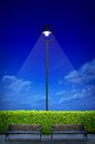 Street lighting with two bench and shrub Stock Photo