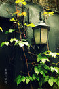 Street lights of dafen oil painting village plant and Royalty Free Stock Photography