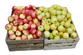 Street sale of fresh green and red apples Royalty Free Stock Photo