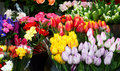 Street stall with variety of flowers Stock Images