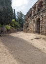 Street with wall of roman forum to the side walls are and the other some trees remnants the ancient civilization was in spain in Stock Photo
