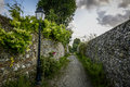 Streetlight on footpath foot path with wild flowers Stock Images