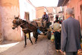 The streets of marrakech a narrow alley marrakesch a man leads a cart pulled by a donkey and some people populate alley Royalty Free Stock Photography