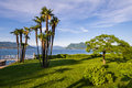 Stresa lake maggiore italy Royalty Free Stock Photo