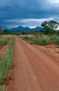 A stretch of dirt road, Uganda Royalty Free Stock Photography
