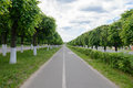 stretches to the horizon asphalt road with trees