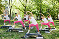 Stretching group of women outdoor Royalty Free Stock Photo