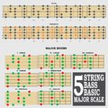 String bass basic major scale for bass player te this is teacher and student Stock Image